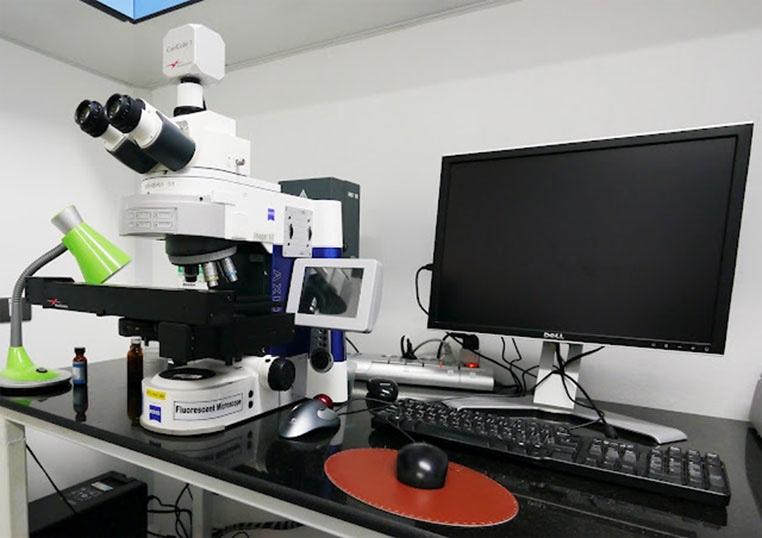 胚胎染色体筛检显微镜